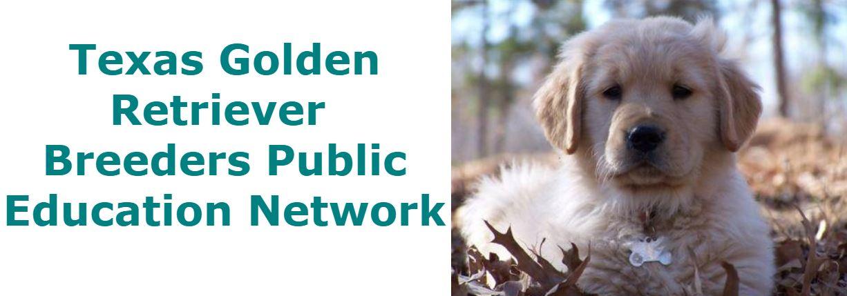 Texas Golden Retriever  Breeders Public Education Network